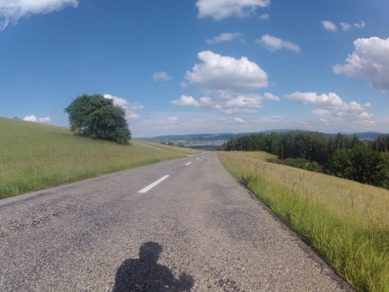 Vom Rotberg ins Aaretal hinunter