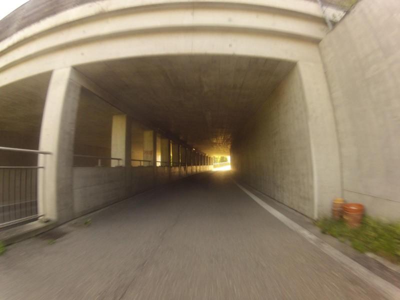 Wildbrücke