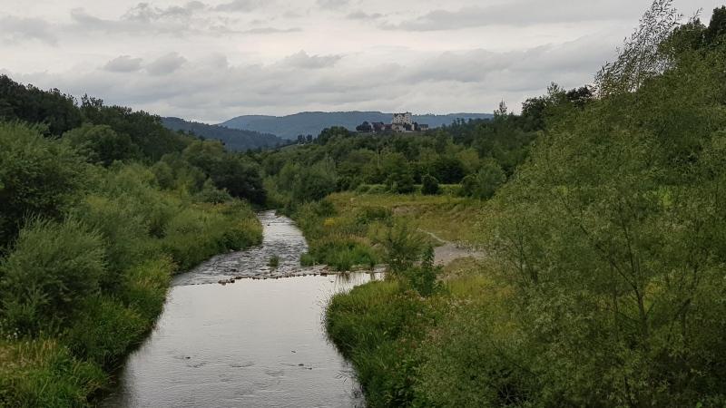 Bünz mit Schloss Wildegg