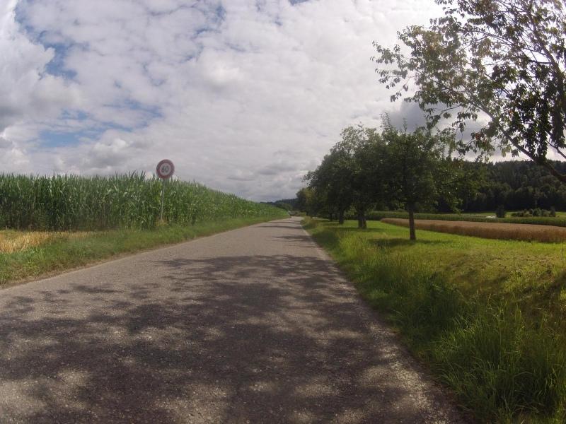 Von Schafisheim nach Seon