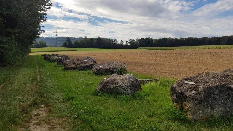 Findlinge auf der Habsburg
