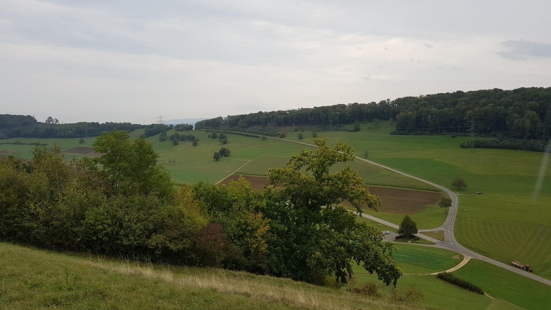 Blick vom Besseberg hinüber zum Rotberg