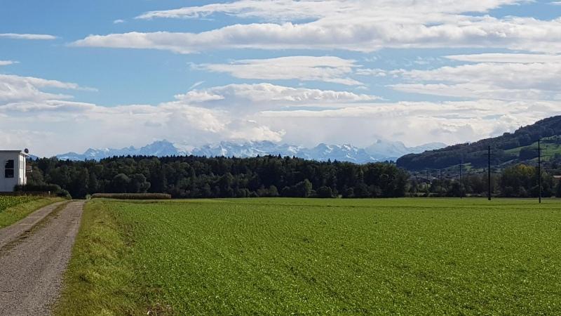 Egliswil, Blick in die Alpen