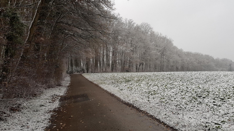 Schnee am Bözberg