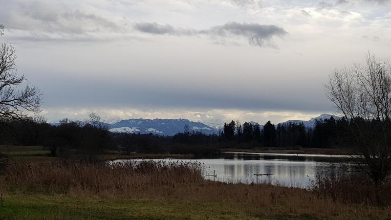 Flachsee (bei Bremgarten) mit Alpenkamm