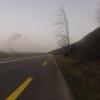 dem Rhein entlang
