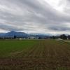 Blick zum Alpenkamm, Auw