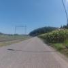 Im Rheintal aufwärts, bei Mellikon