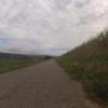 Auf dem Radweg ab Etzgen rheinaufwärts