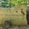 Torfmoos, Vogelrüti