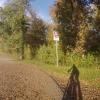 Herbstwald im Aaretal