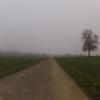 Nebel im Reusstal