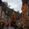 Weihnachtsbaum in Lenzburg