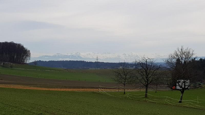 Blick vom Reusstal an die Alpen