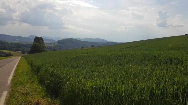 Blick über das Reusstal bis hinüber zum Jura