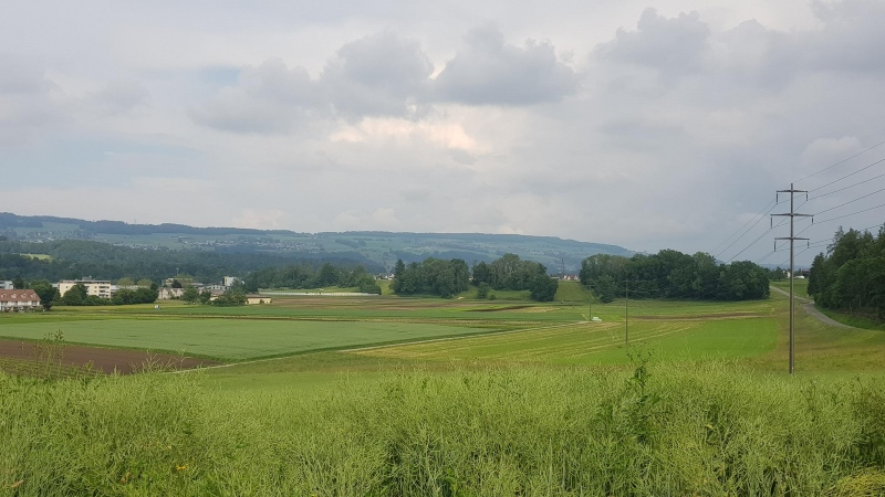 Reusstal