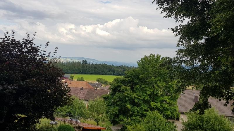 Blick von der Habsburg in Richtung Reusstal