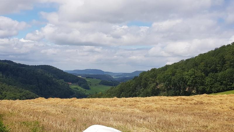 Blick von der Saalhöhe in Richtung Kienberg