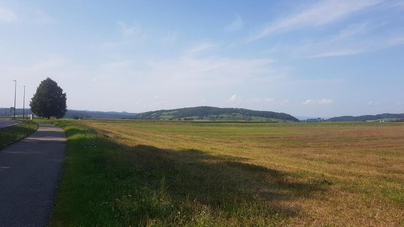 Blick über das Birrfeld