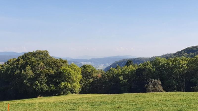 Blick vom Rotberg zum Wasserschloss