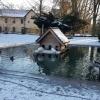 Ententeich im Park von Königsfelden