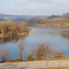 Rhein bei Rümikon