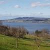 Hallwilersee, Blick nach Norden