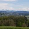 Vierlinden mit Blick über das Aaretal zu den Alpen