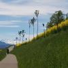 Unterwegs im Reusstal in Richtung der Alpen