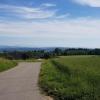 Blick von der Baldegg über das Reusstal