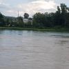 Aaremündung in den Rhein