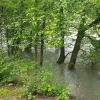 Aare, Hochwasser
