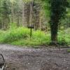 unterwegs auf Waldwegen
