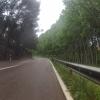 Dem Rio Turia entlang
