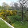 Dem Frühling nahe