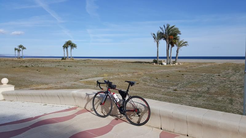Sonne, Palmen und Rennrad