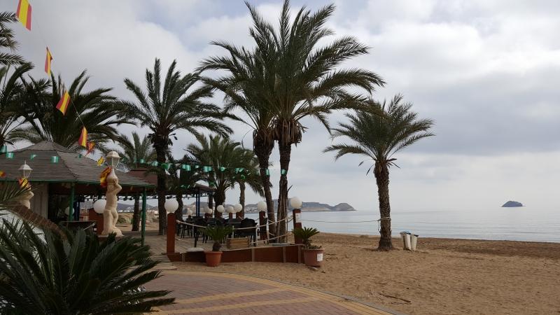 Palmen am Strand von San Juan