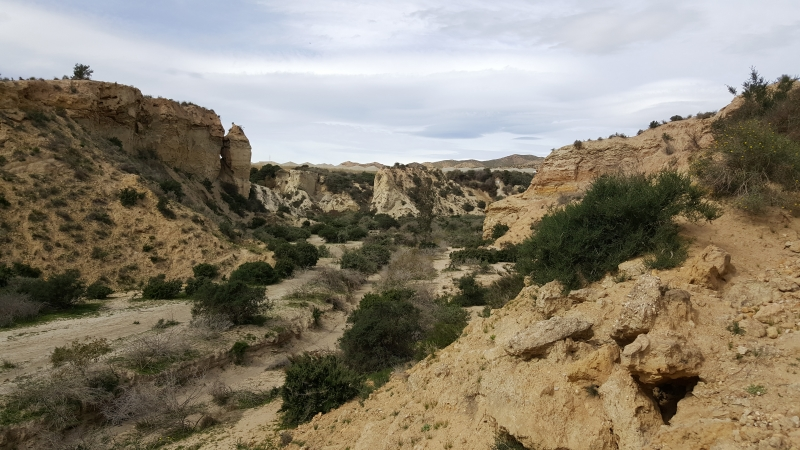 Zerfurchte Landschaft