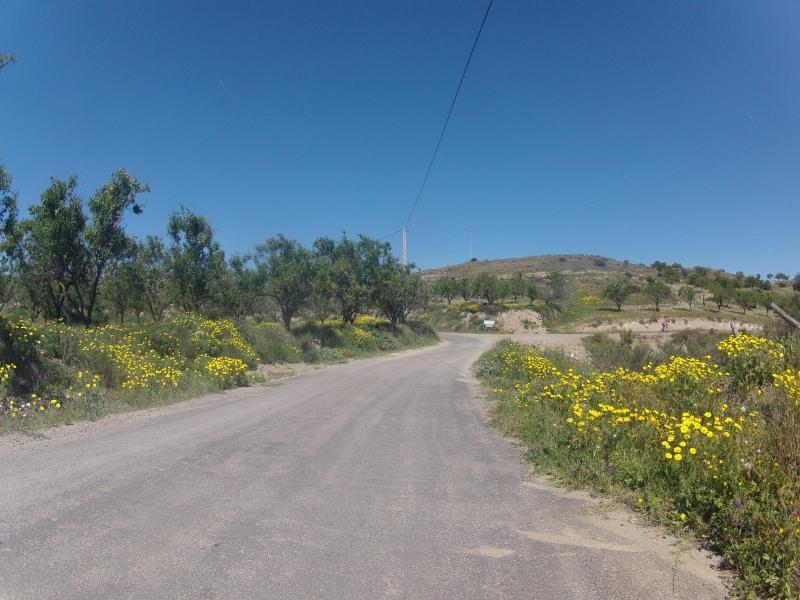 an der Sierra Cabrera