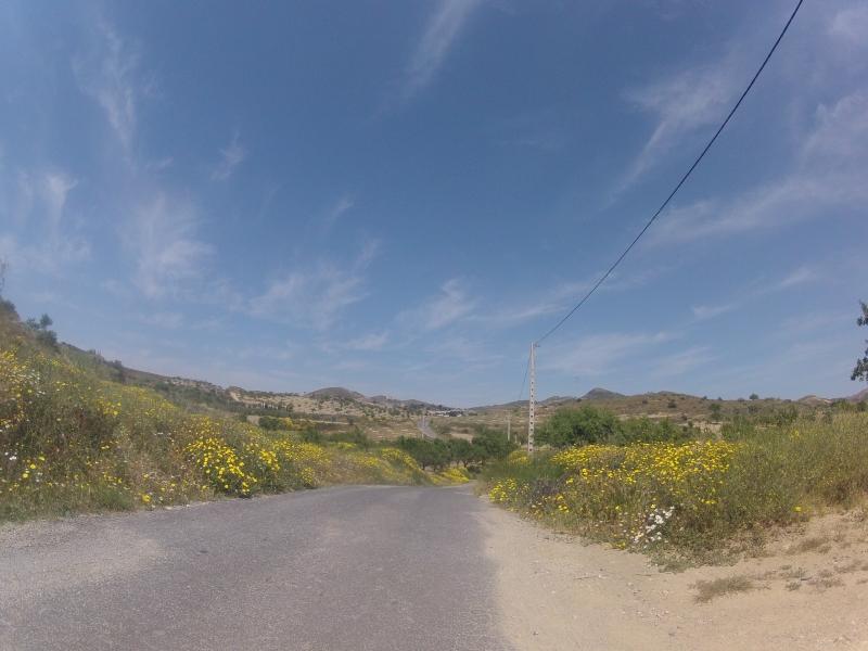 in der Sierra Cabrera