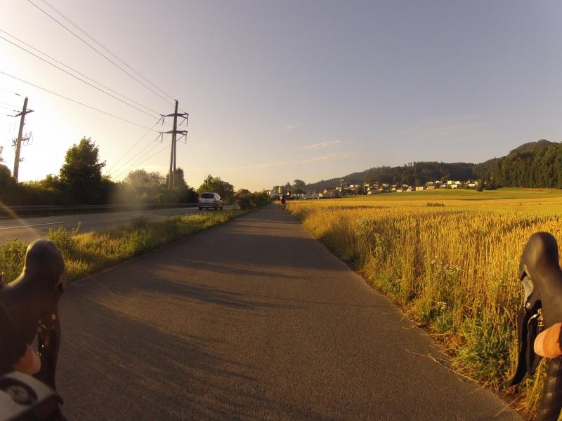 Goldenes Getreidefeld