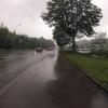 Regen an der Waldegg