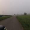 Nebel im Limmattal