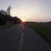 die letzte sommerliche Sonne