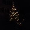 der erste Weihnachtsbaum