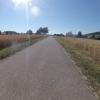 Zwischen den Getreidefeldern im Surbtal