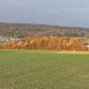 Herbst im Surbtal