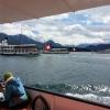 Im Hafenbecken von Luzern