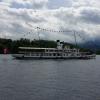 Dampfschiff Stadt Luzern fährt vorbei
