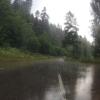 Gewitterregen im Steinatal